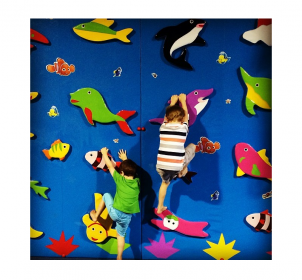 climbingwall-holiday-fun-northshore